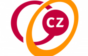 CZ - vergoeding zorgverzekering